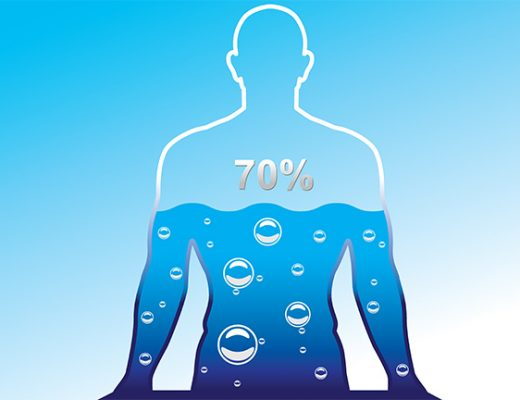 use of water for the human body